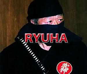 Bujinkan Ryuha