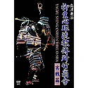 Yagyu Shingan Ryu DVD Vol 2 & 3 by Kenji Shimazu